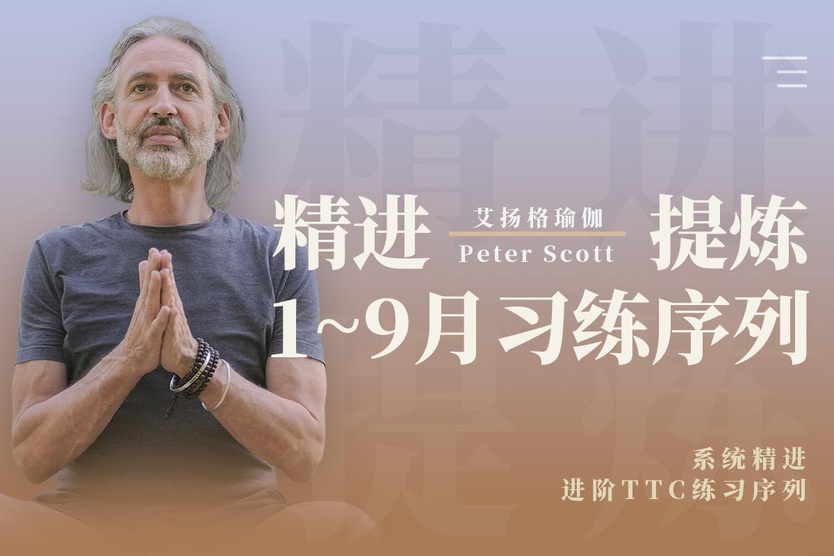 『艾扬格瑜伽-精进提炼1~9月习练序列系列课』- Peter Scott